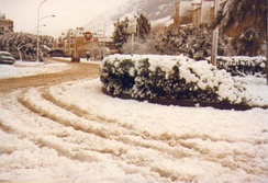 One of the rare snowfalls in Alcamo (8 January 1981)