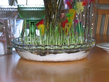 Rye-grass for Easter.JPG
