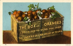 Box of Oranges, from the Lower Rio Grande Valley, Texas (postcard, c. 1912–1924)