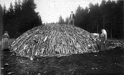 Wood pile before covering it with turf or soil, and firing it (circa 1890)