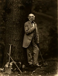 Prime Minister William Ewart Gladstone cultivated the public image as a man of the people by circulating pictures like this of himself cutting down oak trees with an axe. Photo by Elliott & Fry