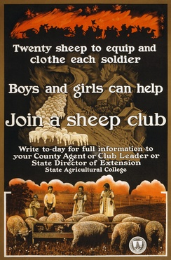 A World War I-era poster sponsored by the United States Department of Agriculture encouraging children to raise sheep to provide needed war supplies