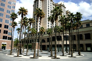 The Circle of Palms in downtown San Jose today marks the historical site of California's first state capitol