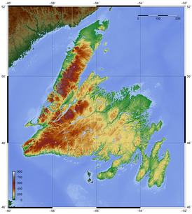 Topography of Newfoundland