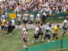 Steelers at training camp in Latrobe