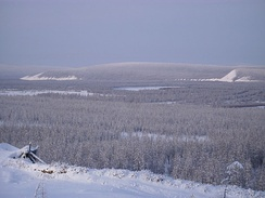Siberian taiga in the river valley near Verkhoyansk. The lowest temperature recorded there was −68°C (−90°F).