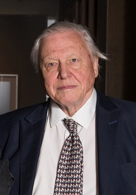 Broadcaster and naturalist David Attenborough is the only person to have won BAFTAs for programmes in each of black and white, colour, HD, and 3D.