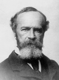 William James was the first psychologist to describe the tip of the tongue phenomenon, although he did not label it as such