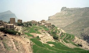 Terraced fields in the Harazi subrange of the Sarawat Mountains in western Yemen