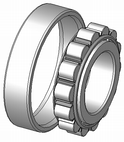 A cylindrical roller bearing