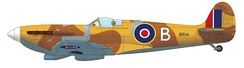 Supermarine Spitfire Mk.VC, BR114, of the No 103 MU, Aboukir, 1942