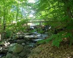 The 150-acre Flat Rock Brook nature preserve is located in Englewood.