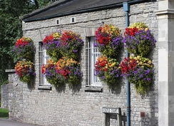 Hanging baskets in Thornbury, South Gloucestershire