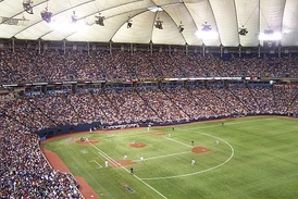 "The Hubert H. Humphrey Metrodome, showing a white ""grass"" line."