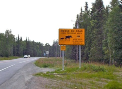Warning sign in Alaska where trees and brush are trimmed along high moose crossing areas so that moose can be seen as they approach the road.