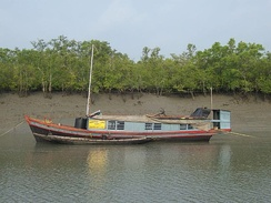 Police Boat Patrolling in Sundarban National Park, West Bengal