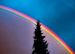 High dynamic range photograph of a rainbow with additional supernumerary bands inside the primary bow