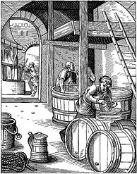 Brewing was an early application of biotechnology.