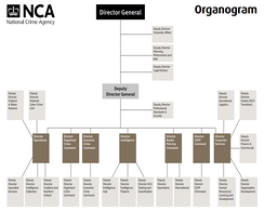 Organisation chart for the NCA