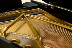 Strings of a grand piano