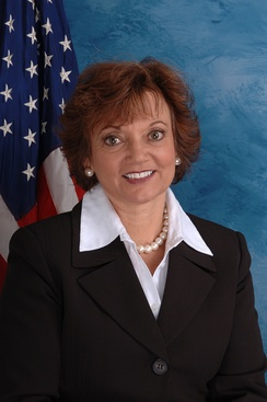 Debbie Halvorson, who unsuccessfully sought re-election in the 11th district