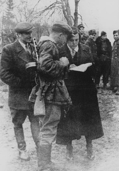 Shukhevych, Dmytro Hrytsai and Kateryna Meshko (uk) in Buchach, 1943; shortly before the massacres of Poles in Volhynia and Eastern Galicia.