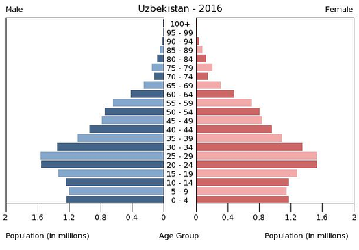 Поло-возрастная структура Узбекистана, 2016г.