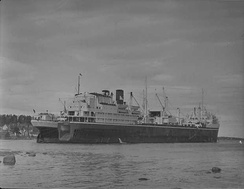 The British whaling factory ship Balaena, May 1949, was operated by the Hector Whaling Company.