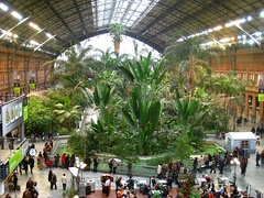 Atocha Station, in the city of Madrid, is the biggest train station in Spain.