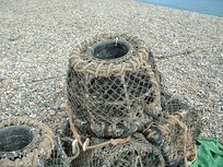An example of a lobster trap used in Devon, England