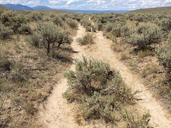 Present-day footpaths following ruts of the Oregon Trail near the National Historic Oregon Trail Interpretive Center east of Baker City, Oregon