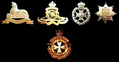 The badge of the Royal Anglian Regiment (right) and of one of its predecessors, the Royal Lincolnshire Regiment (left), the Royal Bermuda Regiment (bottom), and both of its predecessors, the Bermuda Militia Artillery (Royal Artillery) and the Bermuda Volunteer Rifle Corps (second and third from left).