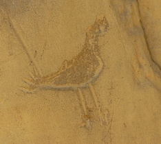Chaco Pictograph, Chaco Culture Historical Park, NM