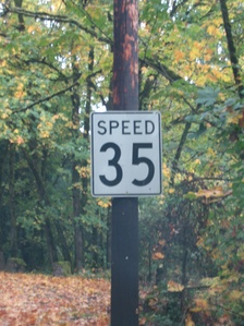 "A standard-style Oregon speed sign removing the word ""limit"""