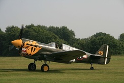 "P-40K 42-10256 in Aleutian ""Tiger"" markings."