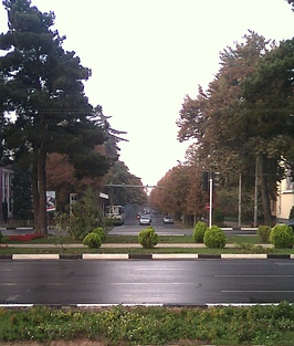 Plants and trees on a Dushanbe street
