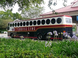 A Disney Cruise Line bus which takes guest to and from the terminal from Orlando International Airport; as well as around Walt Disney World.