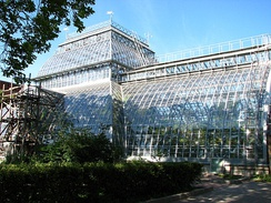 The palm greenhouse of the Saint Petersburg Botanical Garden