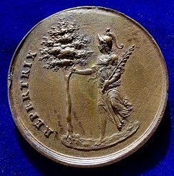 The reverse of this medal: Christina of Sweden as Minerva holding an olive branch in her left arm and grasping the tree of knowledge with her right hand.