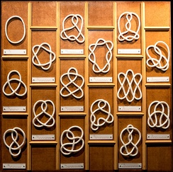 Examples of different knots including the trivial knot (top left) and (below it) the trefoil knot