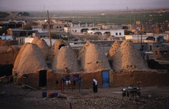 Village of beehive houses in Harran, Turkey.