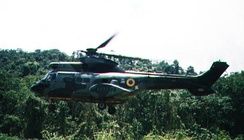 A Puma helicopter from the Army's Aviation Branch