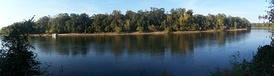 View of Apalachicola River at Torreya State Park