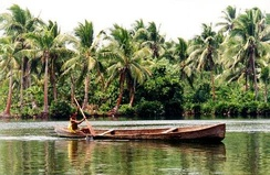 Dugout canoe of pirogue type in the Solomon Islands