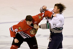 Fighting in ice hockey is officially prohibited in the rules, although it continues to be an established tradition in the sport in North America