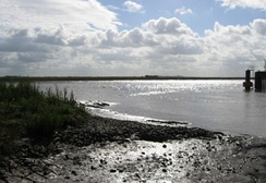 Tidal mudflats at Combwich, near the mouth of the River Parrett on Bridgwater Bay