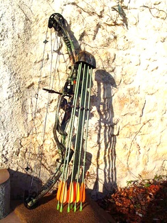 A modern compound hunting bow