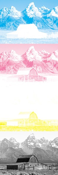 The image above, separated for printing with process cyan, magenta, and yellow inks.