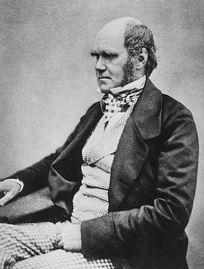 Charles Darwin in 1854, by then working towards publication of On the Origin of Species.