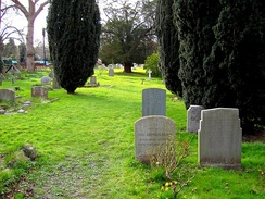 A small row of gravestones